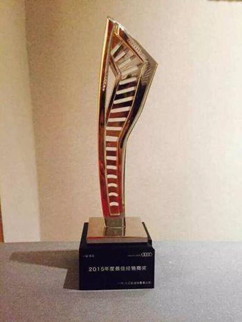 2015年最佳经销商奖