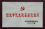 2012年度创先争优先进基层党组织