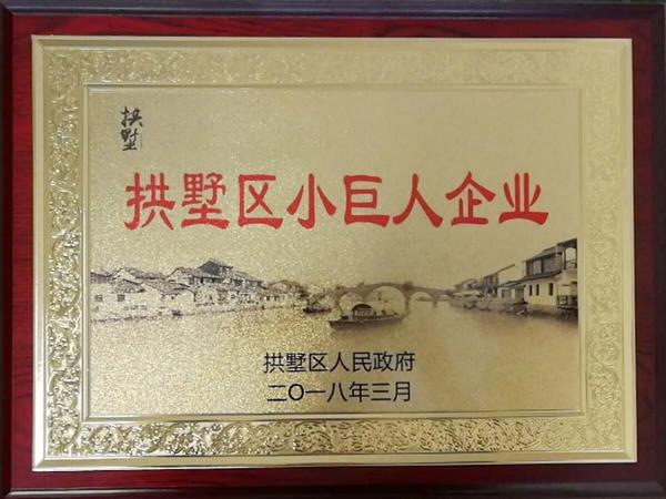"""杭州德奥荣获""""拱墅区小巨人企业 """"称号"""