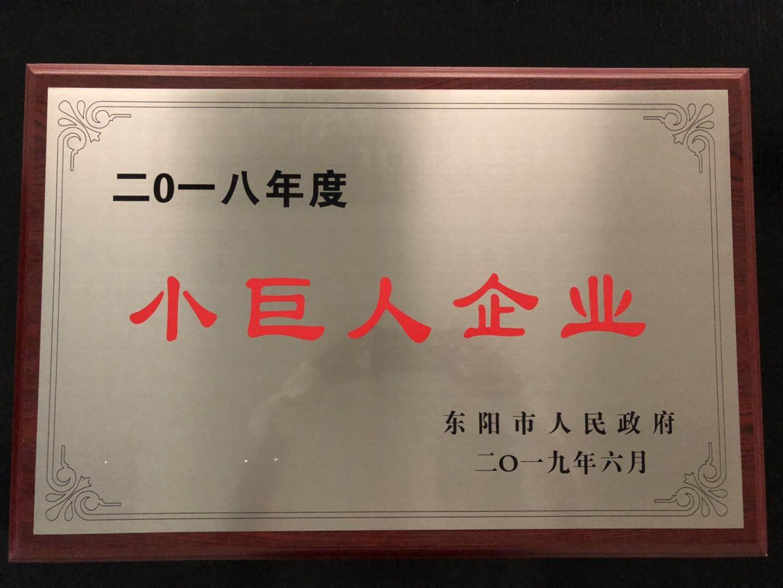 """东阳德奥荣获""""2018年度小巨人企业""""称号"""